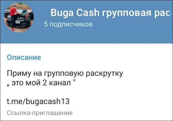 Количество подписчиков на канале Buga Cash